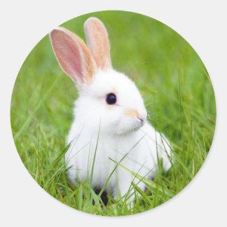 Conejo blanco pegatina redonda