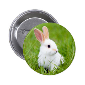 Conejo blanco pin redondo de 2 pulgadas