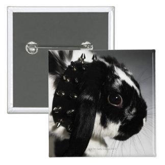Conejo blanco y negro con el cuello tachonado pins
