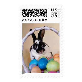 Conejo con la cesta de huevos sello