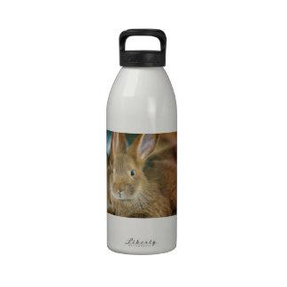 Conejo de conejito botella de beber