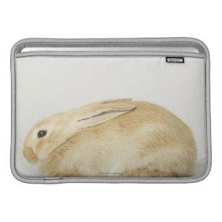 Conejo de conejito beige en el fondo blanco 4 fundas para macbook air