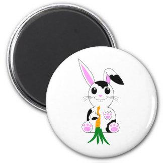 Conejo de conejito blanco y negro imanes