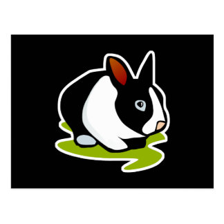 conejo de conejito blanco y negro tarjeta postal