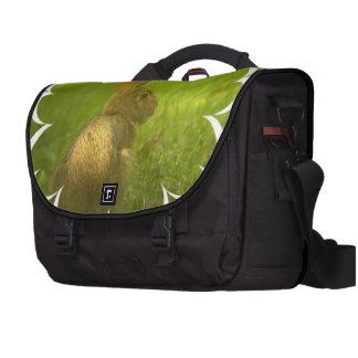 Conejo de conejito bolsa para ordenador