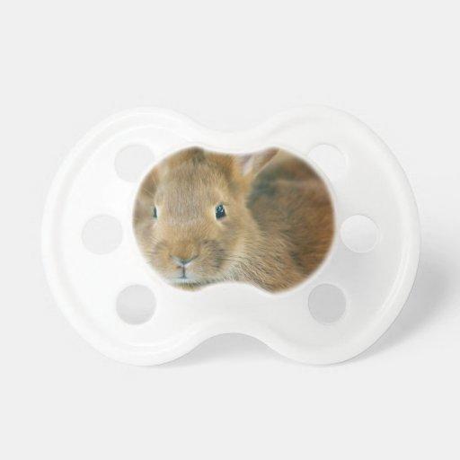 Conejo de conejito chupetes para bebés