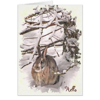 Conejo de conejito de la nieve que piensa en usted tarjeta de felicitación