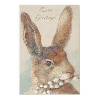 Conejo de conejito de pascua del vintage impresión fotográfica