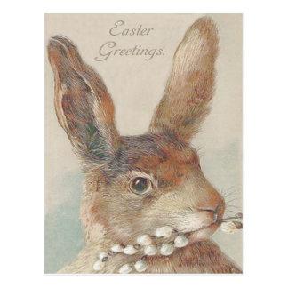 Conejo de conejito de pascua del vintage tarjetas postales