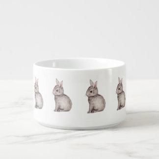 Conejo de conejito del gris de plata tazón