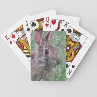 Conejo de conejito en tarjetas de juego de los naipes