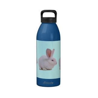 Conejo de conejito lindo de Kawaii Botallas De Agua