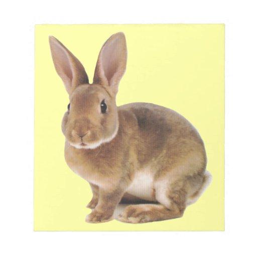 Conejo de conejito lindo de Kawaii Libretas Para Notas