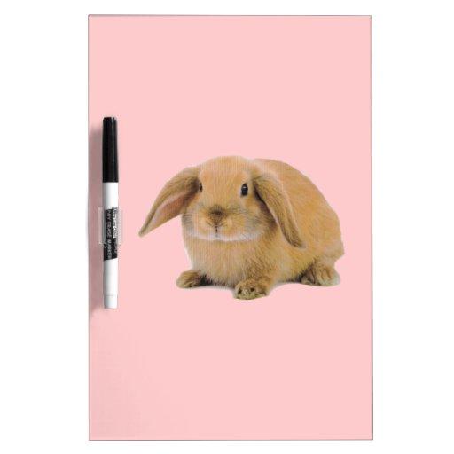 Conejo de conejito lindo de Kawaii Pizarras Blancas De Calidad