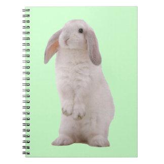 Conejo de conejito lindo de Kawaii Spiral Notebook