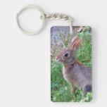 Conejo de conejito lindo del conejo de rabo blanco llaveros