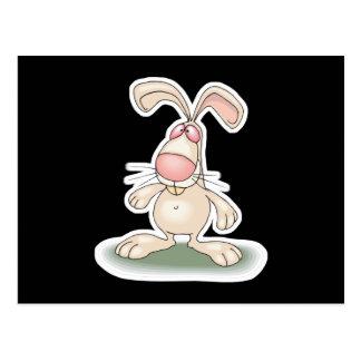 conejo de conejito lindo postales