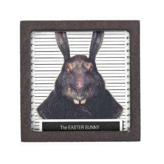 Conejo de conejito malvado de pascua A SOLAS Caja De Joyas De Calidad