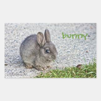 Conejo de conejito - pegatina