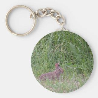 Conejo de conejito salvaje del bebé llavero redondo tipo pin