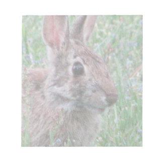 Conejo de conejito salvaje lindo en mini libreta blocs de papel