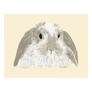 Conejo de conejito postal