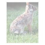 Conejo de conejo de rabo blanco membrete personalizado
