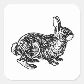 Conejo de conejo de rabo blanco pegatina cuadrada