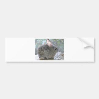 conejo de conejo de rabo blanco pegatina para auto