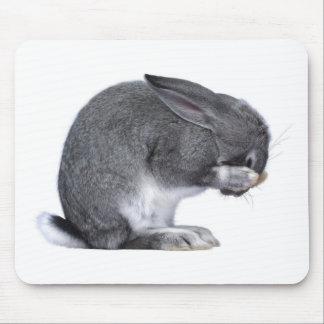Conejo de desesperación alfombrillas de raton