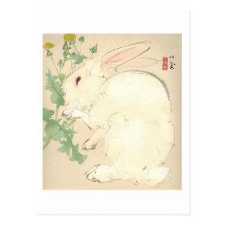 Conejo de la acuarela postales