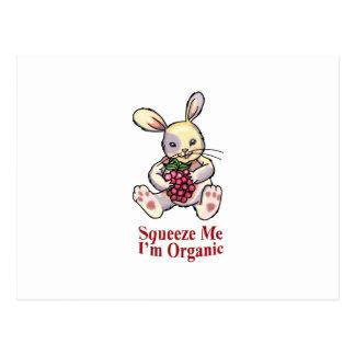Conejo de la frambuesa postal