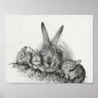 Conejo de Momma con el dibujo de lápiz de los cone Póster