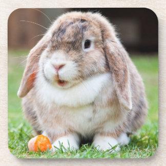 Conejo de orejas ca3idas lindo en hierba con la posavasos de bebida