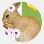 conejo de pascua pegatina redonda