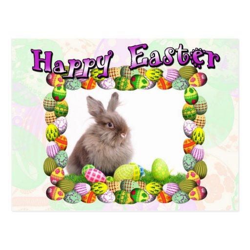 Conejo de Pascua Tarjeta Postal