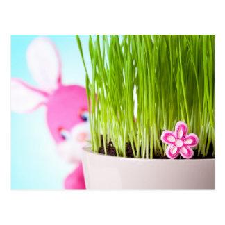 Conejo de Pascua Postales