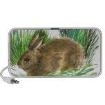 Conejo de rabo blanco de reclinación - acuarela laptop altavoz