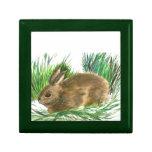Conejo de rabo blanco de reclinación - acuarela cajas de joyas