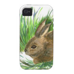 Conejo de rabo blanco de reclinación - acuarela iPhone 4/4S carcasa