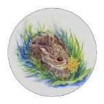 Conejo de rabo blanco del bebé, lápiz de la acuare fichas de póquer