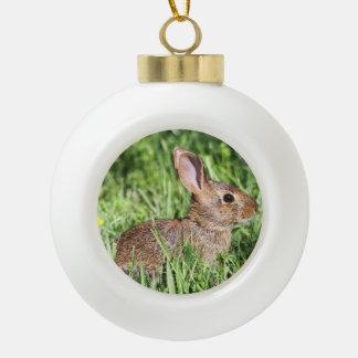Conejo de rabo blanco del este adorno de cerámica en forma de bola