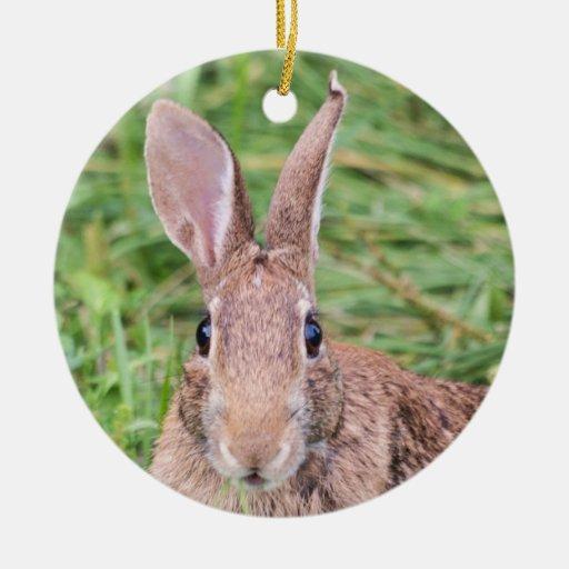 Conejo de rabo blanco del este adorno navideño redondo de cerámica