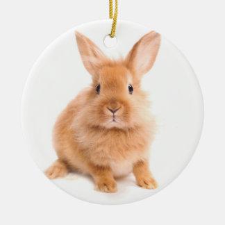 Conejo Ornamentos Para Reyes Magos
