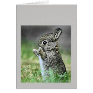 Conejo del bebé tarjeta pequeña