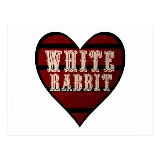Conejo del blanco del corazón del vintage tarjeta postal