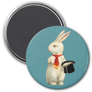 Conejo del blanco del vintage iman