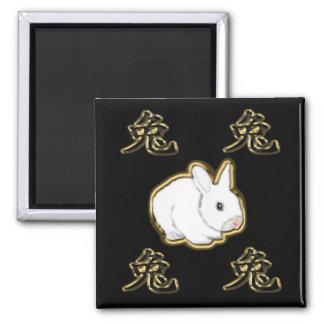 conejo del chino del astro imán cuadrado