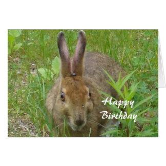 Conejo del feliz cumpleaños tarjeta de felicitación