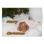 Conejo del navidad tarjeta